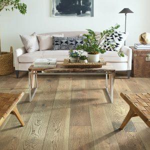 Living room interior | Frazee Carpet & Flooring
