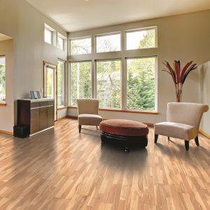 Beautiful view from window | Frazee Carpet & Flooring
