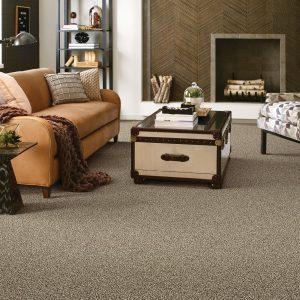 Living room Carpet floor | Frazee Carpet & Flooring