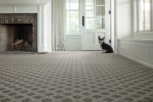 Dog sitting near door | Frazee Carpet & Flooring